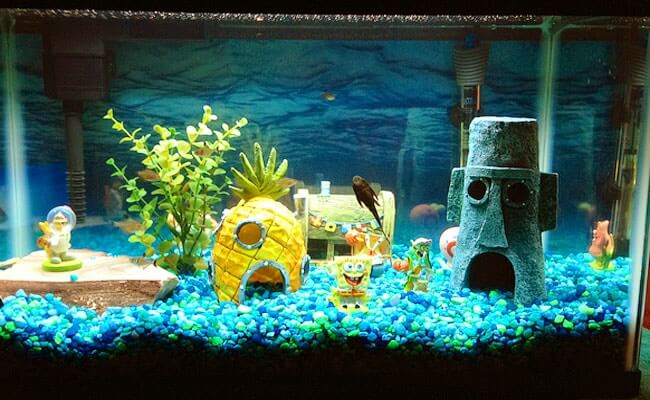 decorated Fish tank