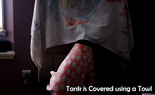 Towled tank