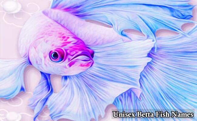 Unisex Betta Fish Names
