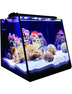 Lifegard Aquatics Full View 7 Gallon Aquarium